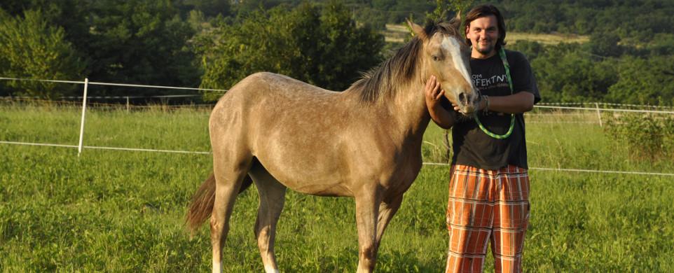 Kontakt s koníkmi